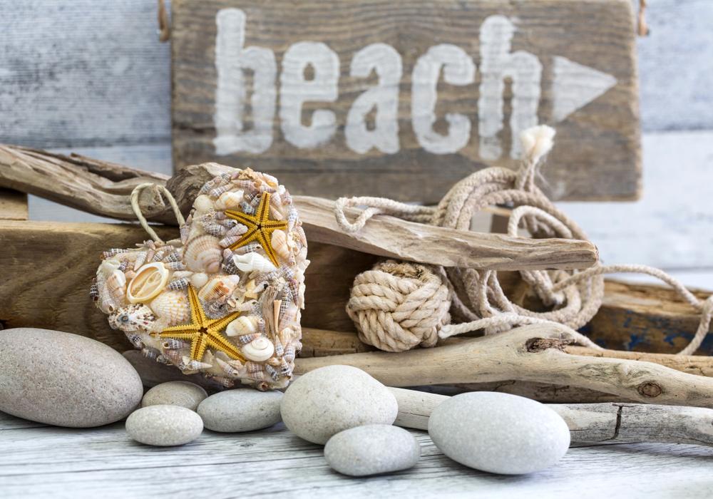 流木と貝殻