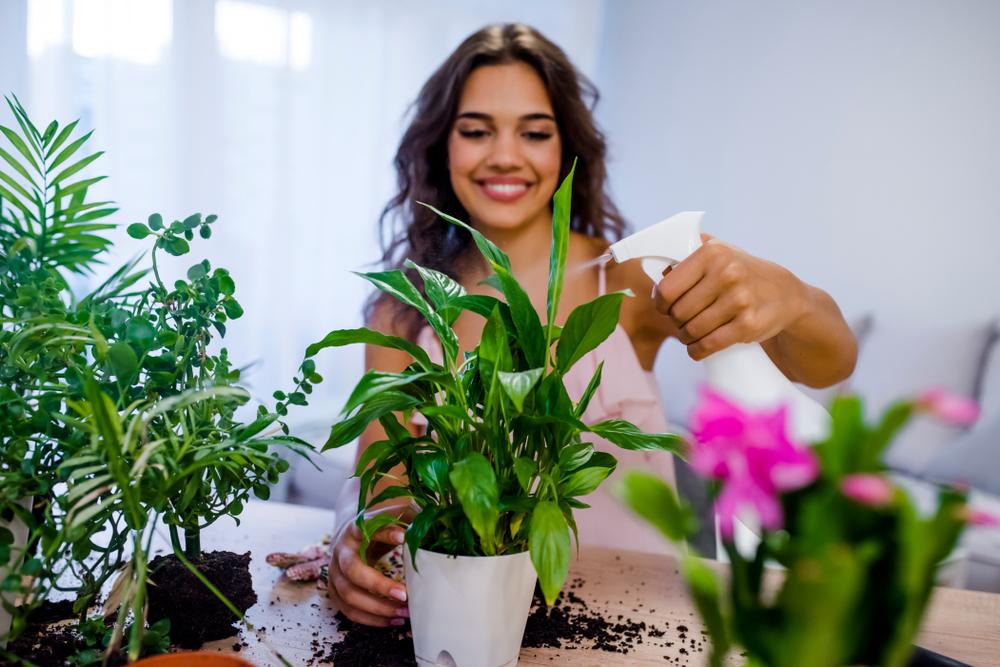 笑顔で観葉植物に水をあげている女性