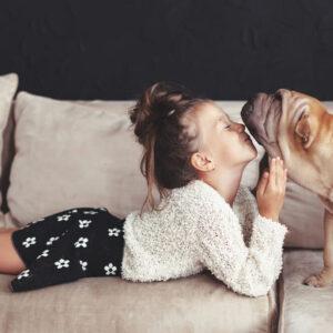 ペットの消臭に最適なものは?お部屋にイヤ~な臭いが残らない方法を伝授
