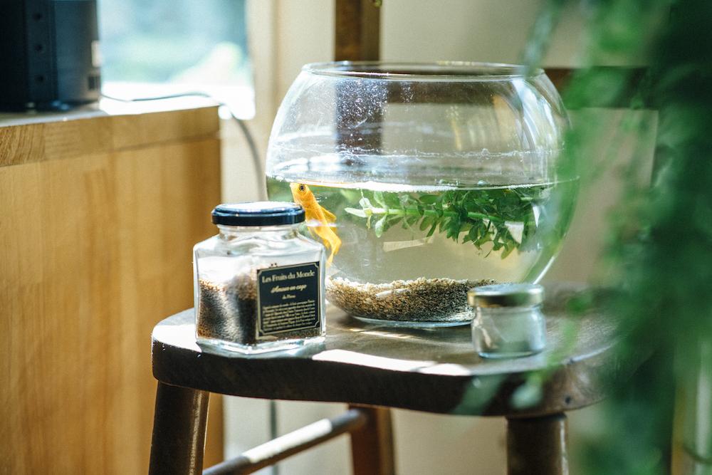 スツールの上に置かれた金魚鉢