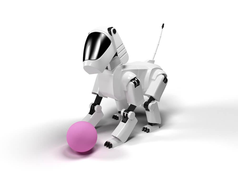 ボールで遊ぶペットロボット