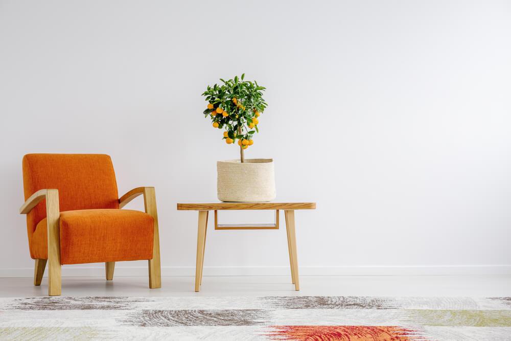 オレンジ色の椅子と花が置かれた部屋