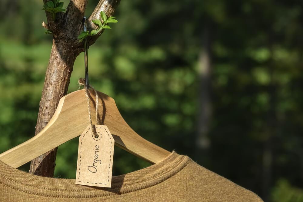 枝にかかったTシャツ