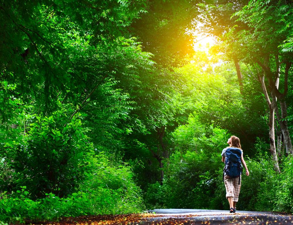 森の中を散歩する女性
